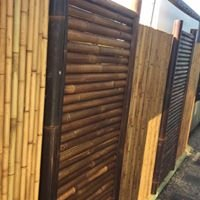 Bamboo Fencing Queensland