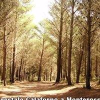 Parco Forestale Calaforno a Monterosso Almo