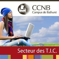 CCNB Campus de Bathurst - Département des TIC