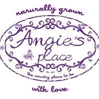 Angie's Place