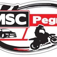 MSC Pegnitz e.V. im ADAC Auto&Kart