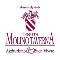 Agriturismo Tenuta Molino Taverna