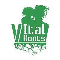 Vital Roots Bcn