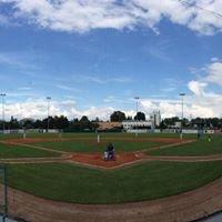 Draci Baseball Club Brno