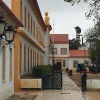 Museu Da Vista Alegre - Ílhavo