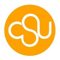 CSU International Faculty City College