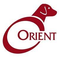 OrientMedia