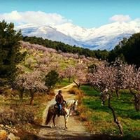 """Rutas a caballo Turismo activo """"Entre montañas"""""""