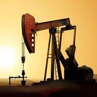 Mitchell Petroleum Land Services, Inc.