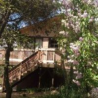 Pheasant Hill Cabin