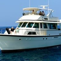 Sun Seeker Motor Yacht