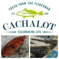 Cachalot - Fresh Fish Market