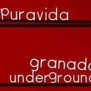 PURAVIDA A. C.