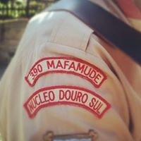 Agrupamento 390 Mafamude