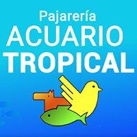 Acuario Tropical Almuñécar