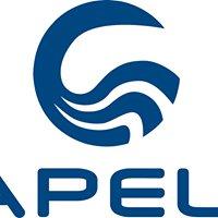 Capelli USA