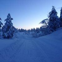 Totræna vinterpark