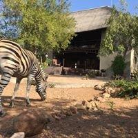 Vakantiehuis Zebra's Nest