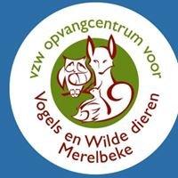 Opvangcentrum voor Vogels en Wilde dieren Merelbeke vzw
