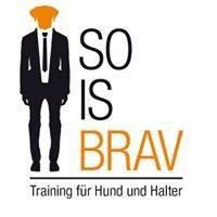 So is Brav - Training für Hund und Halter