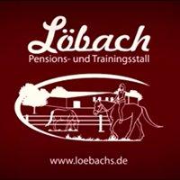 Löbach Pensions- und Trainingsstall