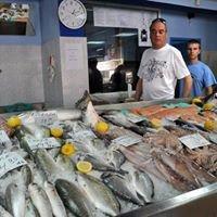 HARIS  FISH