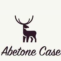 Abetone case