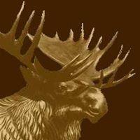 Moose Lodge 2199