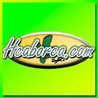 HCABORCA.COM