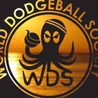 World Dodgeball Society - South Bay, CA