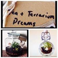 Terrarium Dreaming
