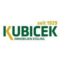Kubicek Immobilien