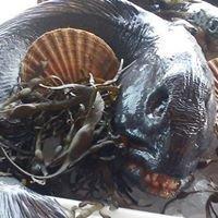 Nordhordland Fisk as