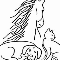 South Fork Veterinary Service