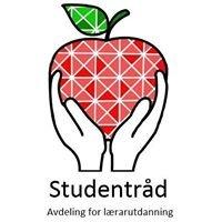 Studentråd, fakultet for lærarutdanning, kultur og idrett, HVL avd. Bergen