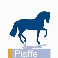 Piaffe Ruitersport