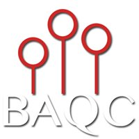 Barrington Area Quidditch Club