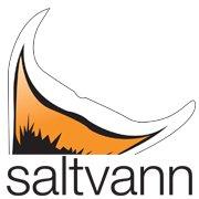 Saltvann