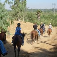 Western Trails Horseback Riding