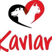 Kaviar International inc.
