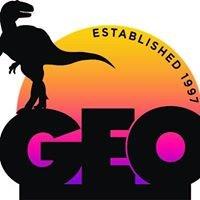 GEO Consultants