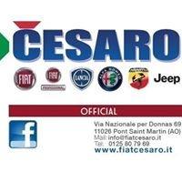 Cesaro SRL