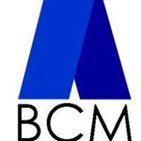 Blevins Construction Management Inc