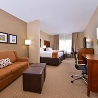 Comfort Suites Mt Vernon Illinois