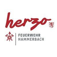 Freiwillige Feuerwehr Hammerbach