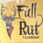Full Rut Taxidermy