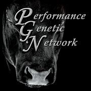 The Performance Genetic Network