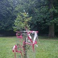 Hillsborough memorial tree Phoenix park Dublin