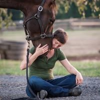 Hand to Heart Equine Massage