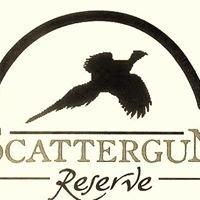 Scattergun Reserve